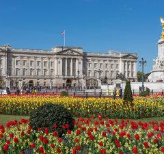 Flores frente del Buckingham Palace