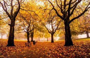 Inglaterra en otoño